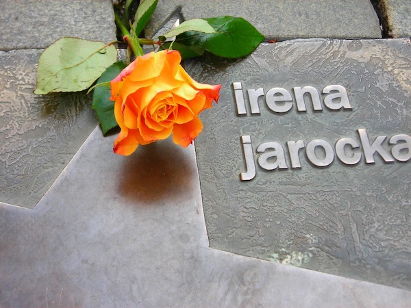 http://irenajarocka.pl/webdocs/image/2019/KG/Gwiazda-Ireny-w-Opolu-zdjecie-tablicy-z-roza.jpeg
